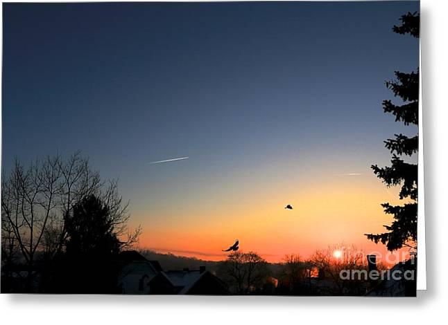 Soaring Sunrise 2 Greeting Card by Jay Nodianos