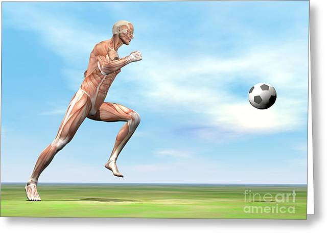 Soccer Player Musculature Running Greeting Card by Elena Duvernay