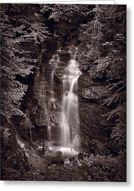 Soco Falls North Carolina B W Greeting Card by Steve Gadomski
