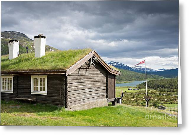 Greeting Card featuring the photograph Sod Roof Log Cabin by IPics Photography