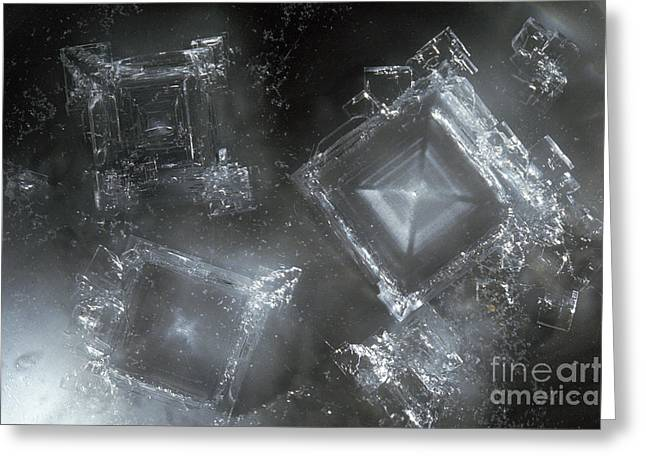 Sodium Hydroxide Crystals Greeting Card by Charles D Winters