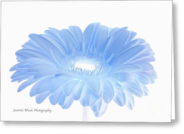 Greeting Card featuring the digital art Have A Beautiful Day  by Jeannie Rhode