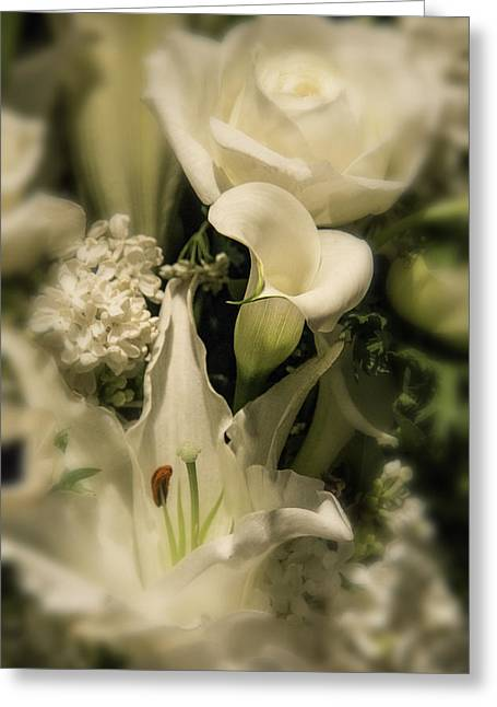 Soft Calla Lily Greeting Card by Garry Gay