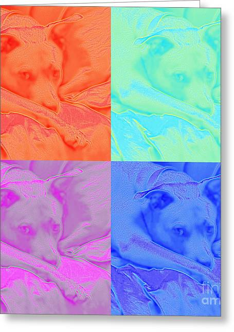 Soft Colors Of A Pit Bull Greeting Card by Renee Trenholm