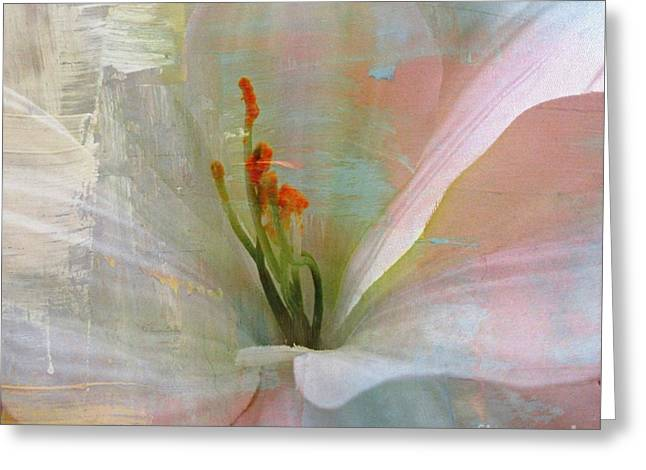 Soft Painted Lily Greeting Card by Judy Palkimas