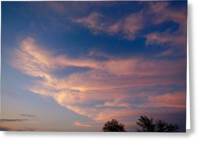 Soft Pink Clouds Greeting Card by Virginia Forbes