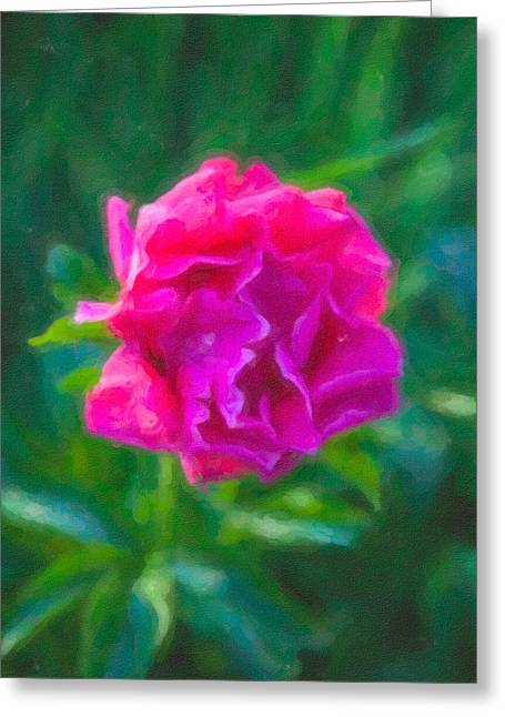 Soft Pink Peony Greeting Card by Omaste Witkowski
