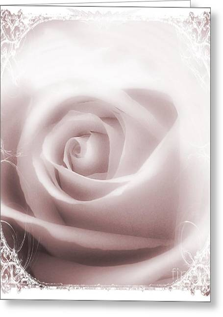 Soft Rose Greeting Card by Michelle Frizzell-Thompson