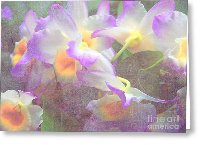 Soft Subtle Orchids Greeting Card