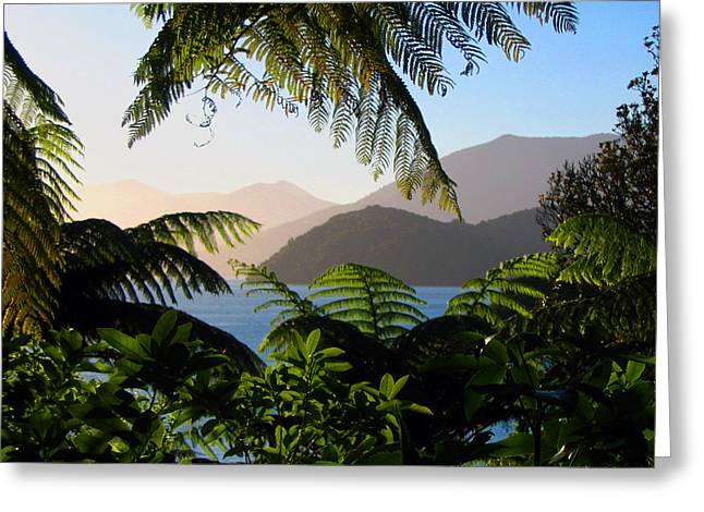 Soft Sun On Hills Through Ferns Greeting Card