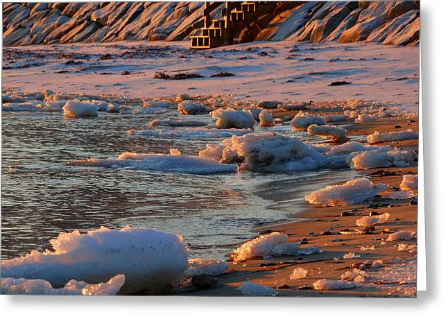 Soft Winter Morning Greeting Card by Dianne Cowen