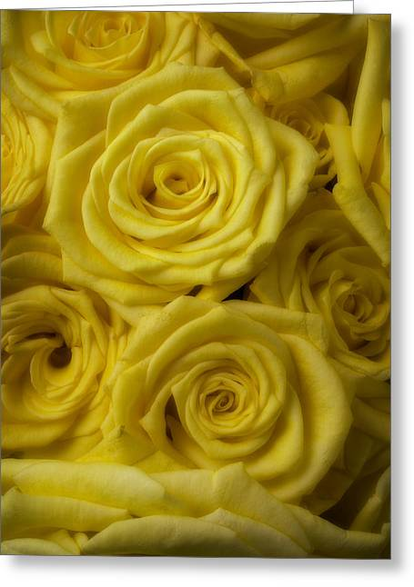 Soft Yellow Roses Greeting Card by Garry Gay