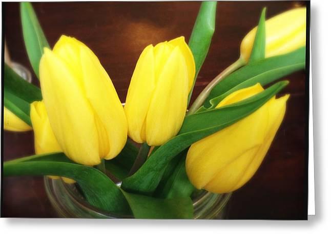 Soft Yellow Tulips Greeting Card