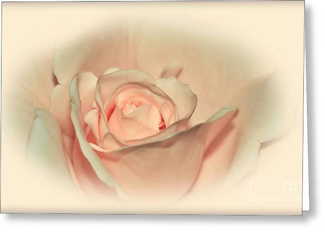Softly Peach Greeting Card by Kaye Menner