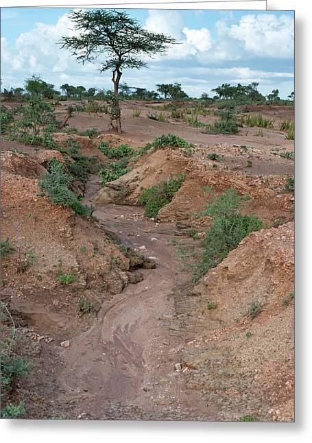 Soil Erosion Due To Water Runoff. Greeting Card