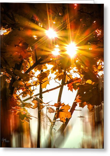 Solar Blast Greeting Card