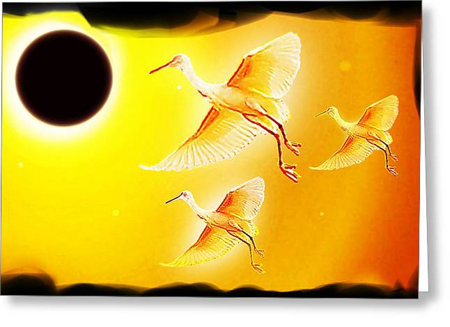 Solar  Eclipse Greeting Card by Hartmut Jager
