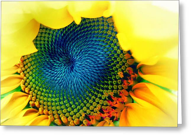 Solar Energy Greeting Card by Marianna Mills
