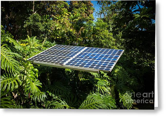 Solar Panel In Jungle Greeting Card