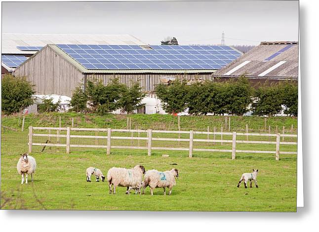 Solar Panel System Greeting Card by Ashley Cooper