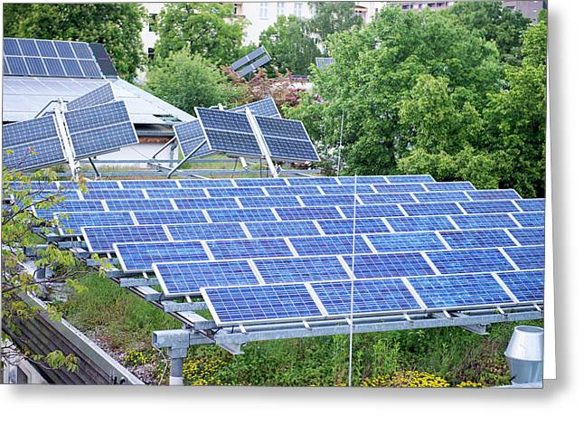 Solar Panels On Green Roof Greeting Card by Louise Murray