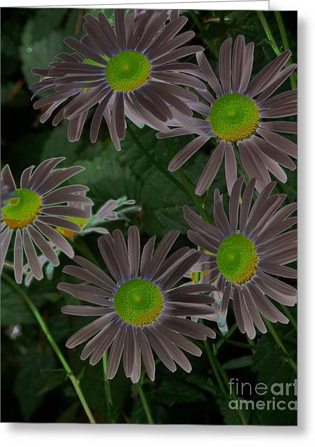 Solarize Greeting Card by Chalet Roome-Rigdon