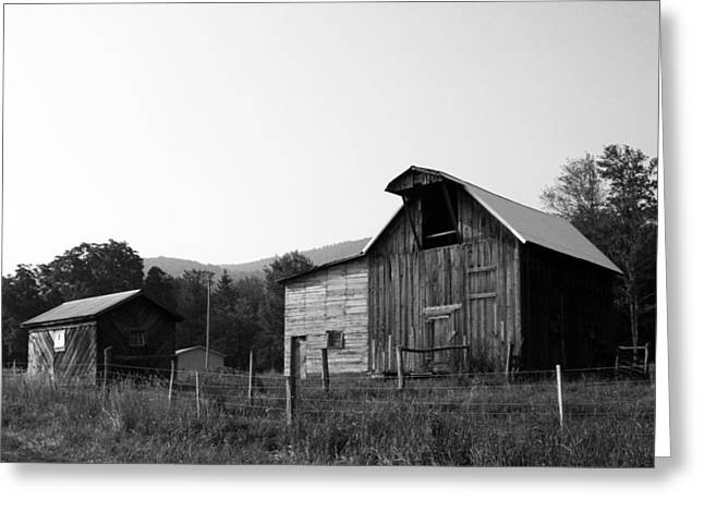 Greeting Card featuring the photograph Solice II by Meaghan Troup
