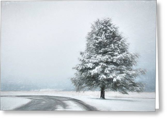 Solitary Beauty Greeting Card by Lori Deiter
