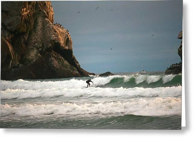 Solitary Surfer Greeting Card by Veronica Vandenburg