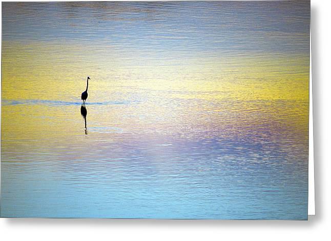 Solitude - Looking Inwards Greeting Card by Athul Krishnan