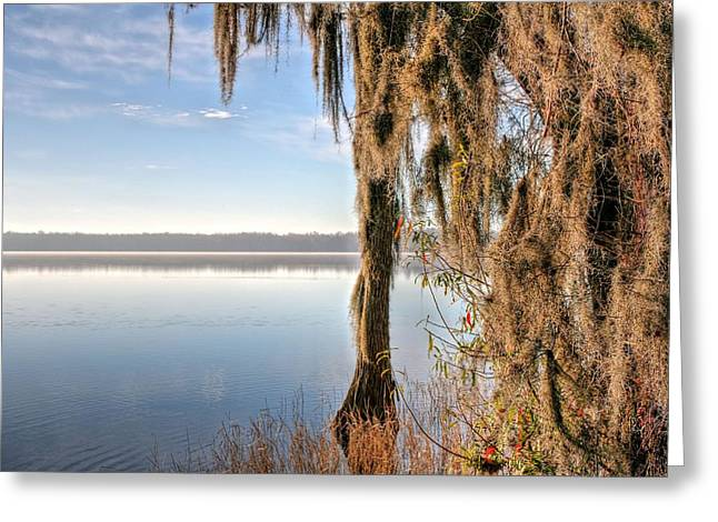 Solitude On Lake Jackson  Greeting Card by JC Findley