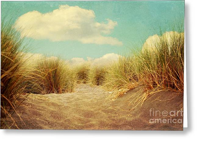 Solitude Greeting Card by Sylvia Cook