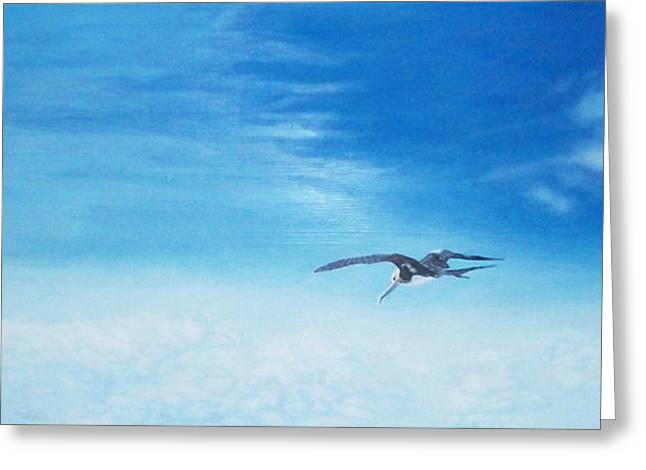 Solo Flight Greeting Card by Mike Durco