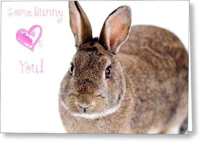 Some Bunny Loves You Greeting Card by Lisa Knechtel