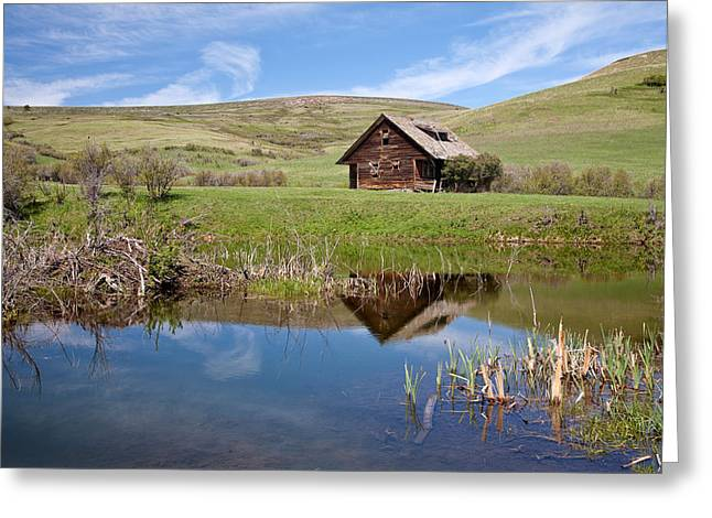 Greeting Card featuring the photograph Somebody's Dream by Jack Bell