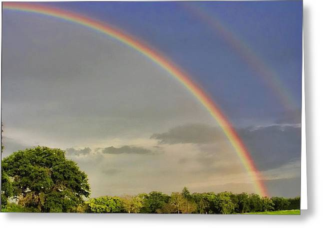 Somewhere Over The Rainbow Greeting Card by Shannon Story