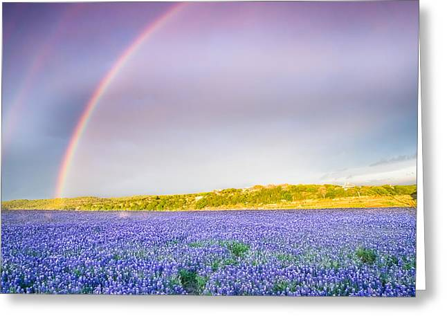 Somewhere Over The Rainbow - Wildflower Field In Texas Greeting Card by Ellie Teramoto