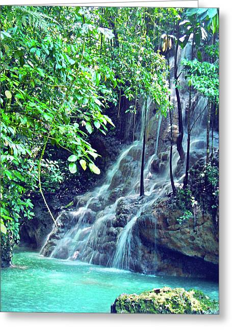 Sommerset Falls Jamaica Greeting Card by Carey Chen