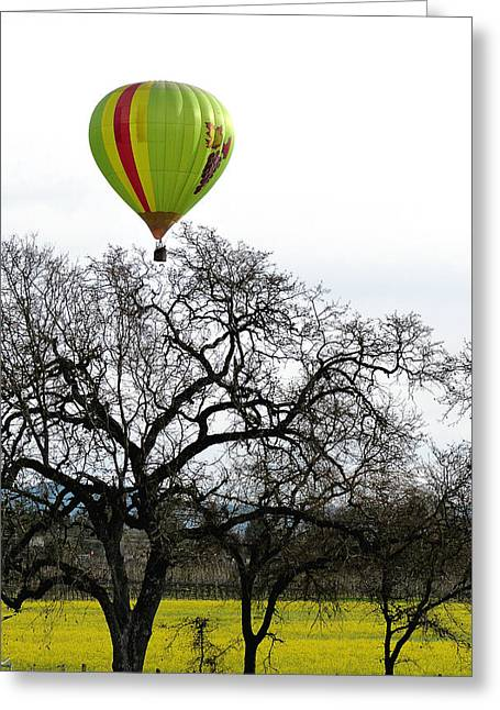 Sonoma Hot Air Balloon Over Mustard Field Greeting Card