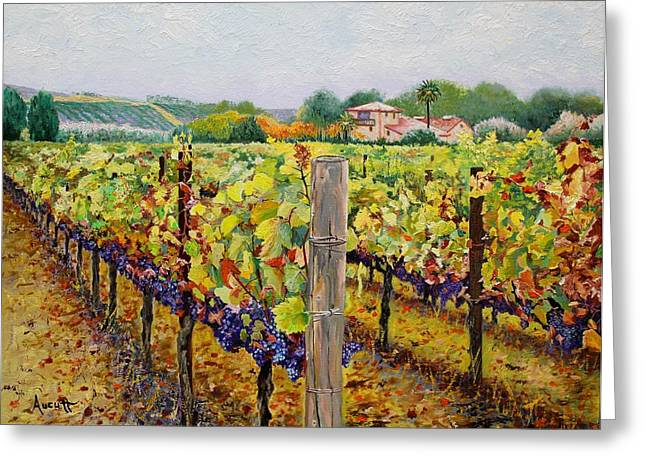 Sonoma Vineyard Greeting Card by Ron Aucutt