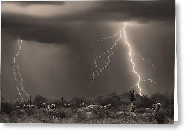 Sonoran Desert Storm - Sepia Greeting Card by James BO  Insogna