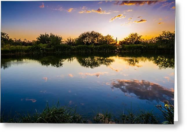 Sonoran Desert Sunset Reflection Greeting Card by Scott McGuire