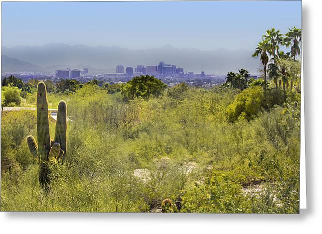 Sonoran Desert With Phoenix Skyline Greeting Card