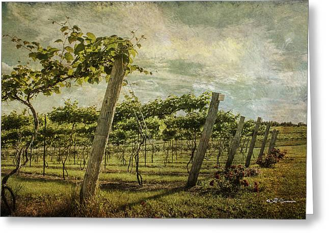 Soon There Will Be Wine Greeting Card by Jeff Swanson