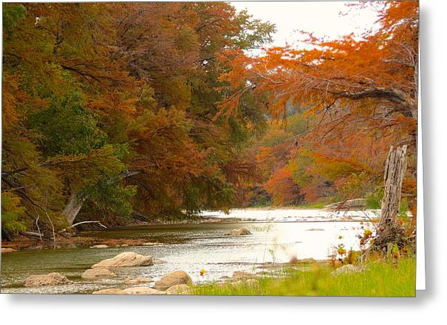 Soothing Color Greeting Card by David  Norman
