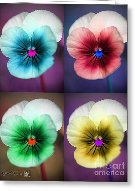 Sorbet Viola Pop Art Greeting Card
