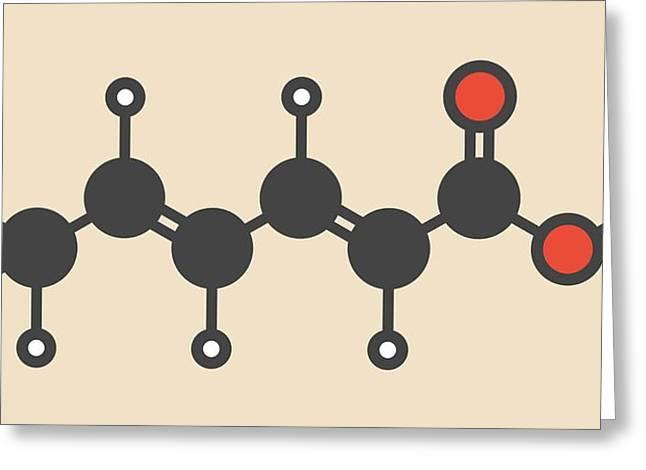 Sorbic Acid Food Preservative Molecule Greeting Card by Molekuul