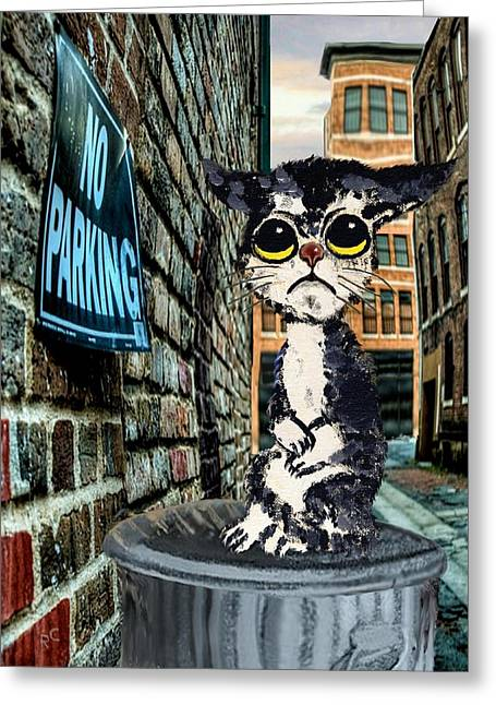 Sorrowful Cat On Can Greeting Card by Ron and Ronda Chambers