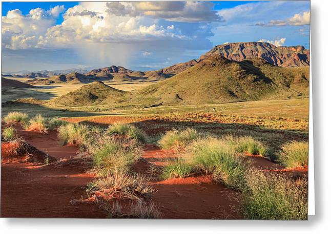 Sossulvei Namibia Afternoon Greeting Card