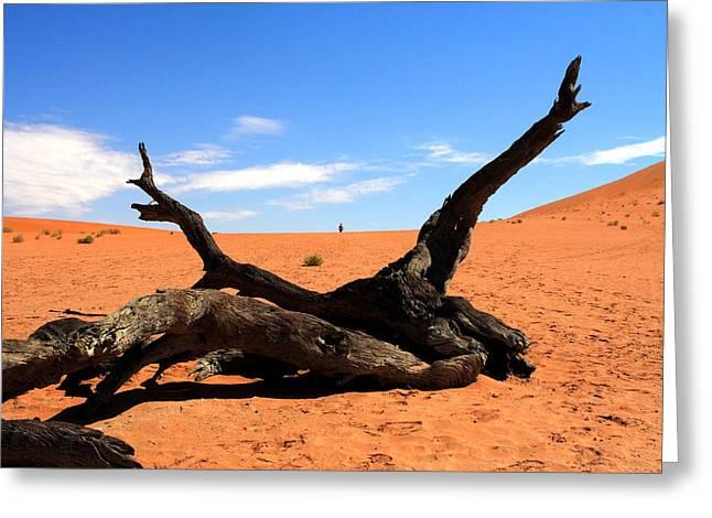 Sossusvlei Namibia Greeting Card